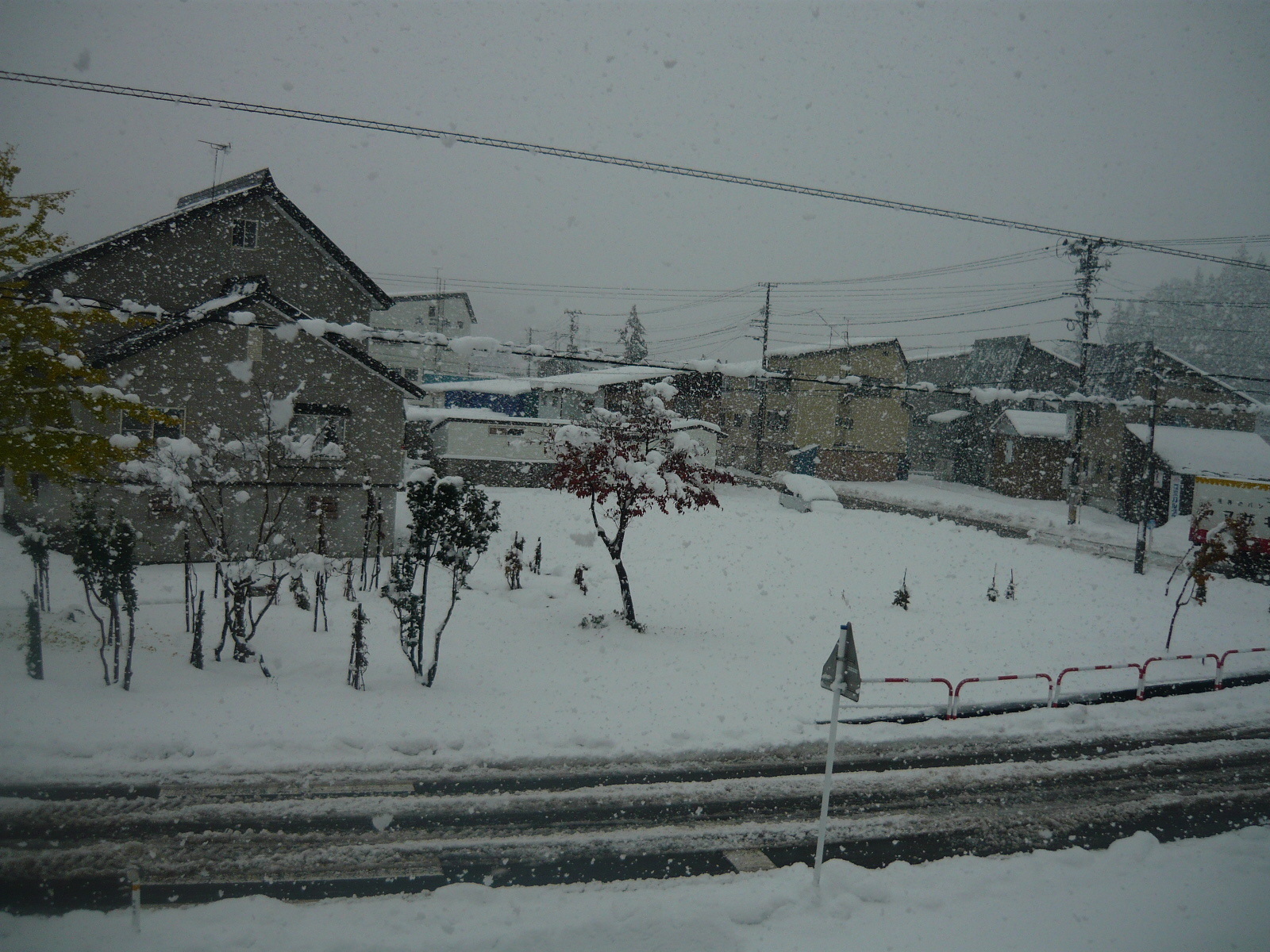 First Myoko Snow Report