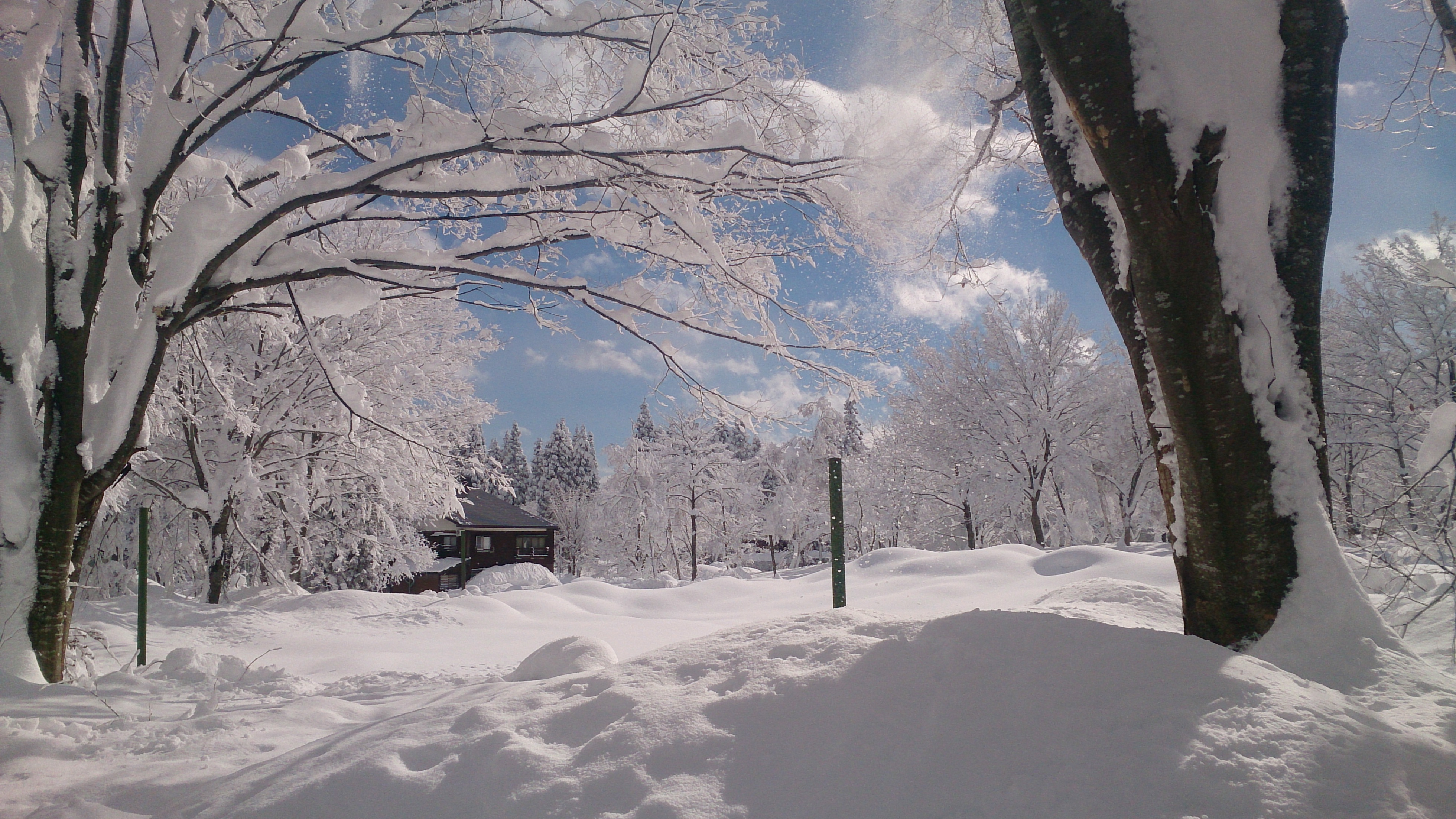 Myoko Kogen Snow Report 12th January 2014