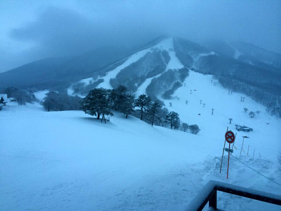 Myoko Snow Report 30 December 2014 - Its Snowing!