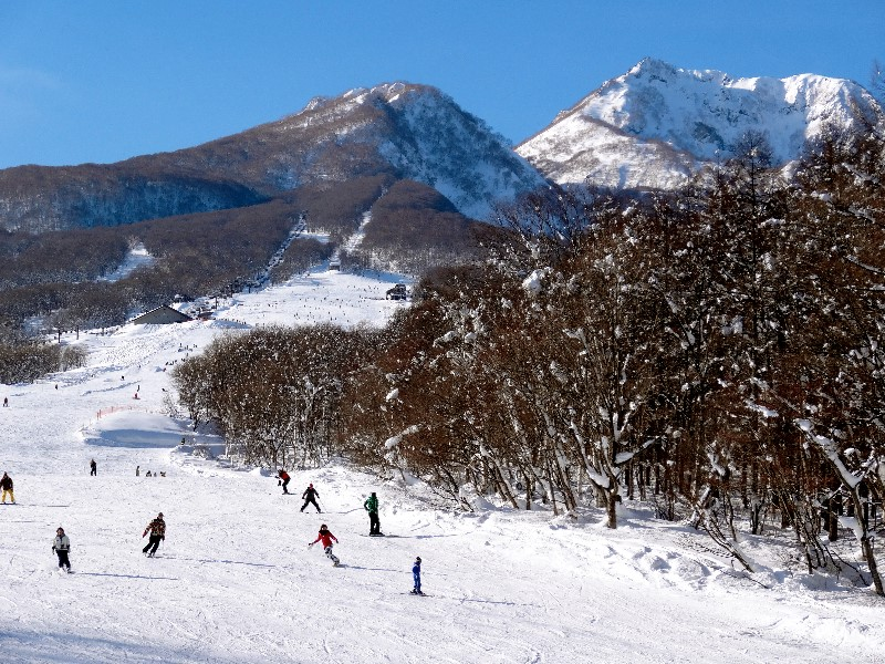 Myoko Snow Report - 04 January 2015