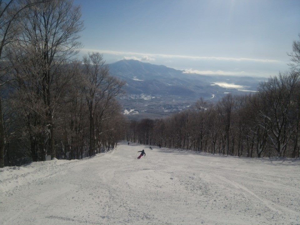 Myoko Snow Report - 24 January 2015