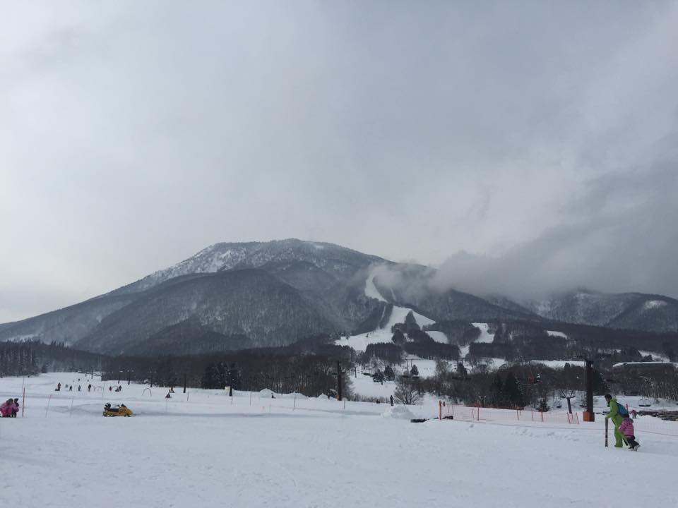Myoko Snow Report - 26 January 2015