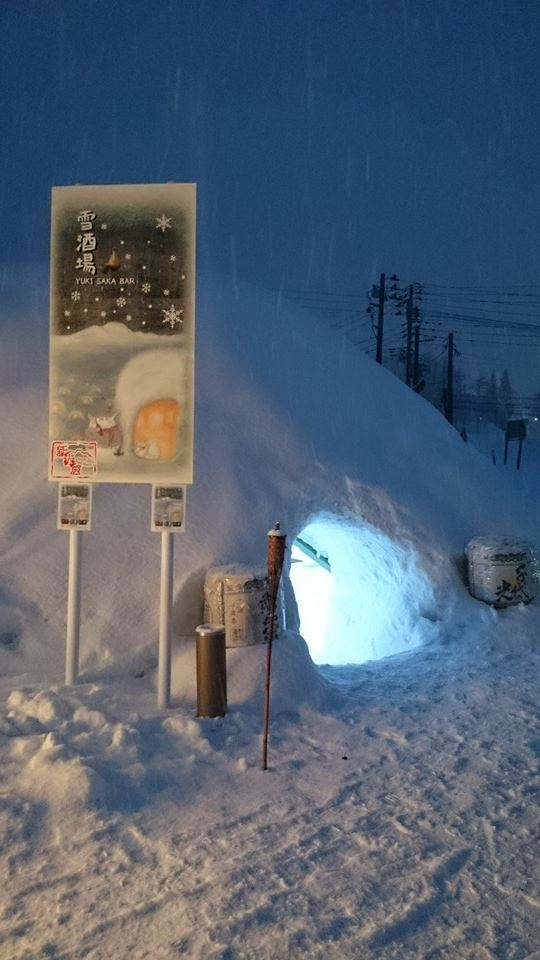Myoko Snow Report - 11 January 2015