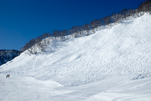Myoko Snow Report 24 February 2015