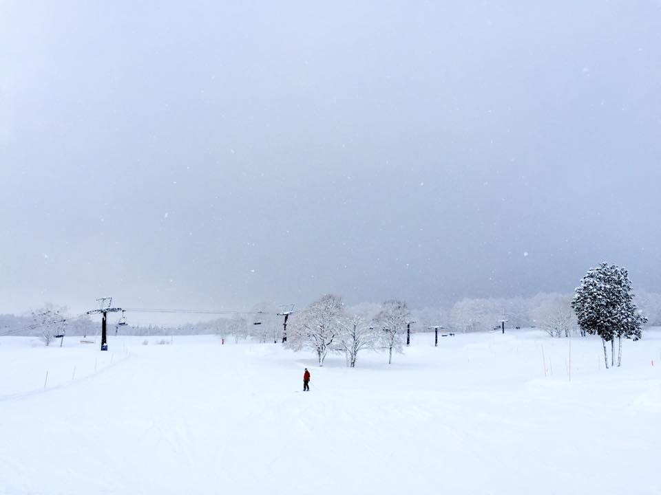 Myoko Snow Report - 03 February 2015
