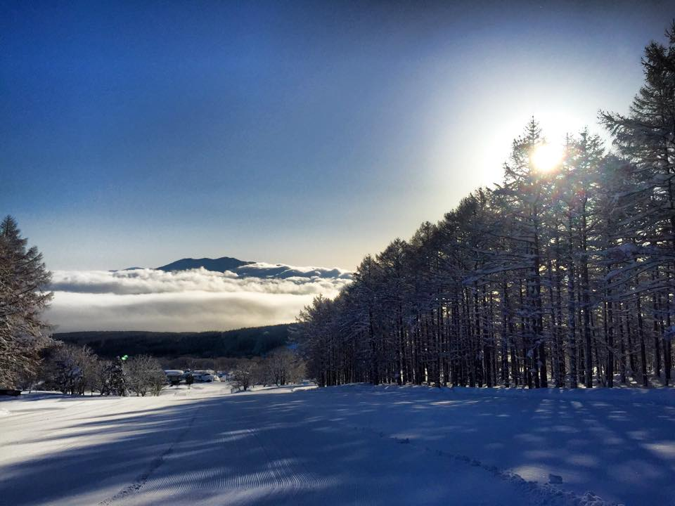 Myoko Snow Report 23 February 2015