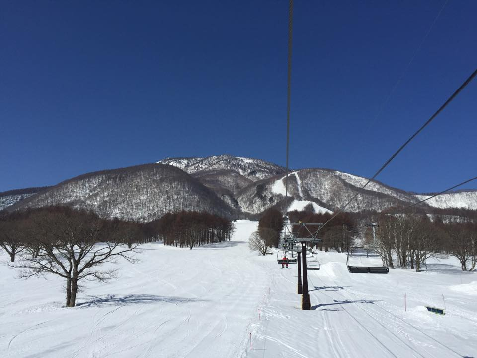 Myoko Snow Report 21 March 2015