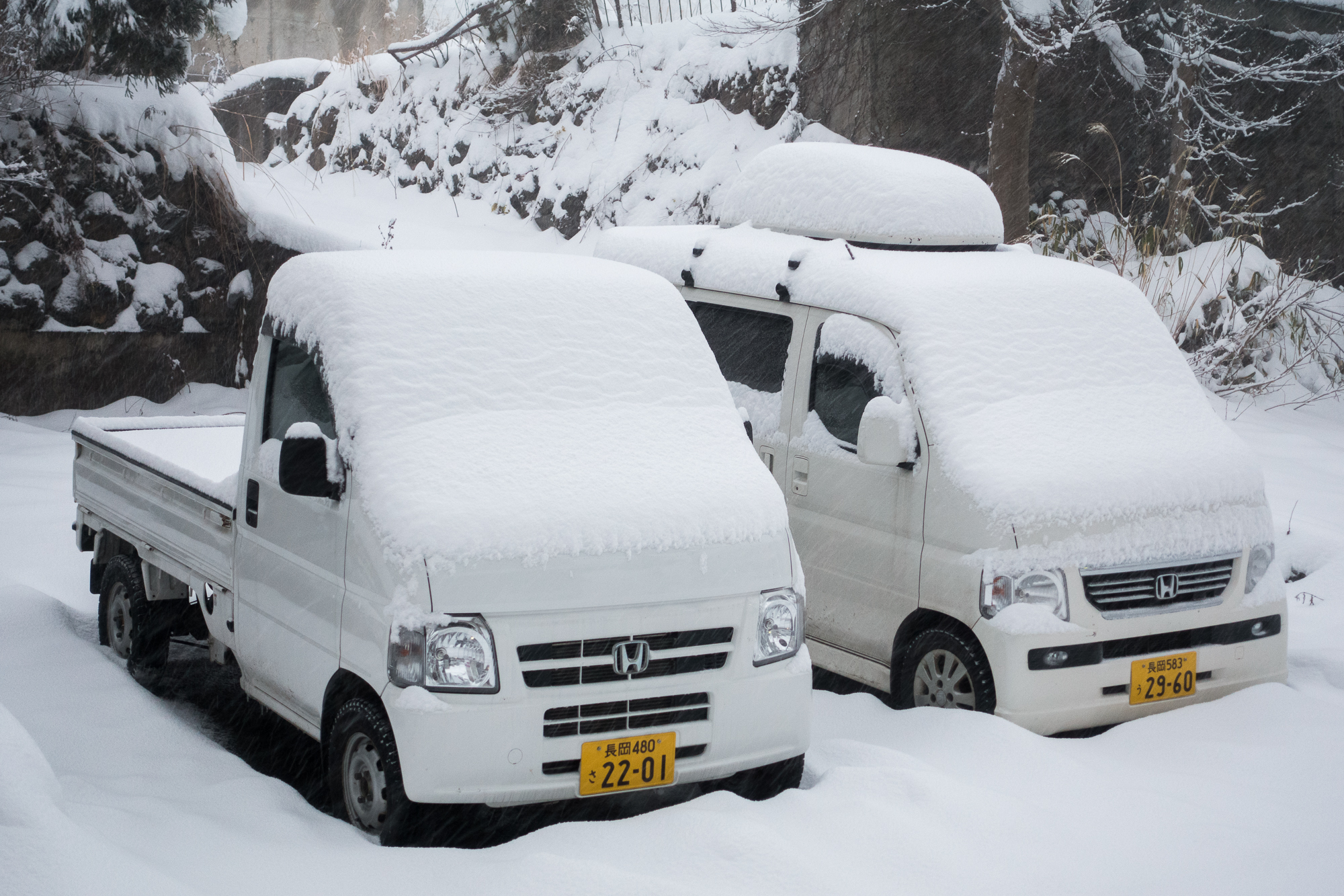 Myoko Snow Report 19 December 2015