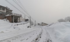 Myoko Snow Report 12 January 2016: Fresh snow and very cold