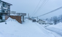 Myoko Snow Report 2 February 2016: Light snow and super cold