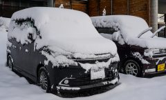 Myoko Snow Report 10 January 2017