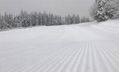 Myoko Snow Report 12 January 2017