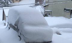 Myoko Snow Report 2 February 2017