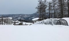 Myoko Snow Report 21 March 2017