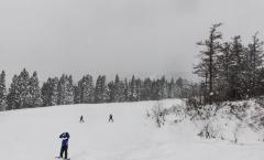 Myoko Snow Report 19 December 2017