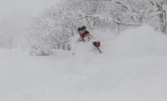 Myoko Snow Report 30 January 2018