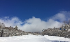 Myoko Snow Report 22 February 2018
