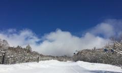 Myoko Snow Report 22 February 2018