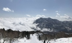 Myoko Snow Report 20 February 2018