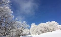Myoko Snow Report 7 March 2018
