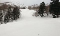 Myoko Snow Report 9 March 2018